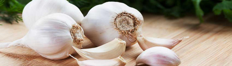iranian garlic